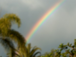 Same Rainbow
